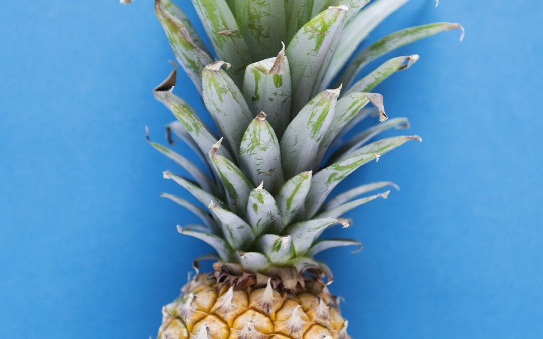 Will eating pineapple improve embryo implantation?