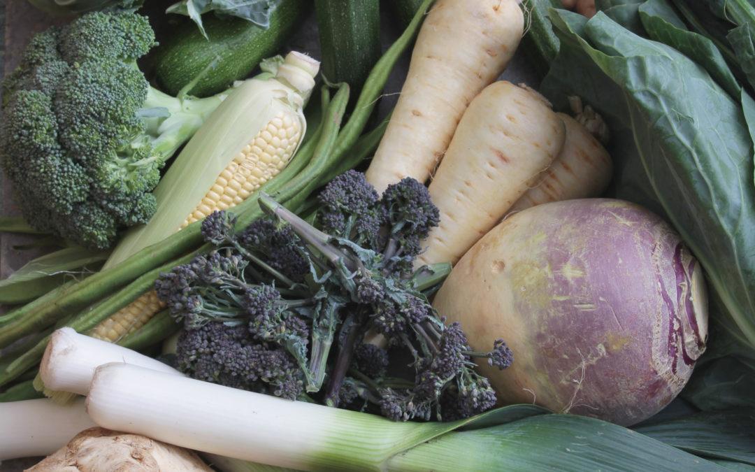 Vegetarian diet during pregnancy: is it safe?