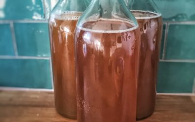 Is kombucha pregnancy safe?