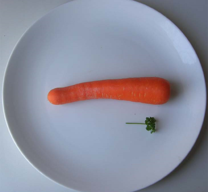 carrot-plate.png