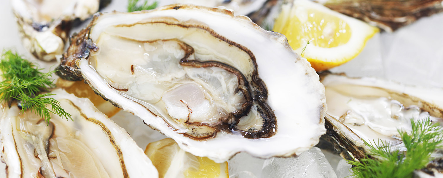 Oysters in their shells with lemon and dill