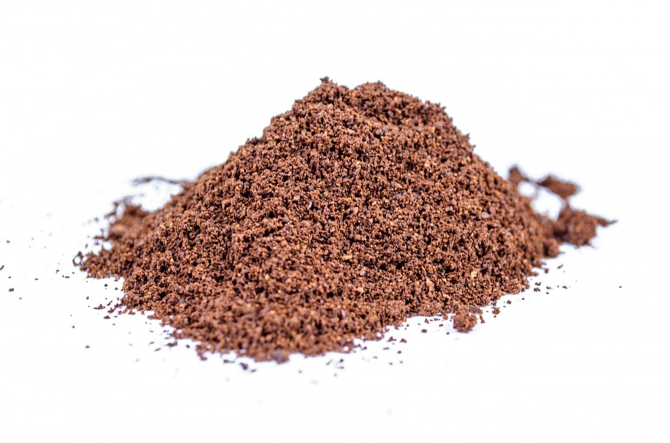 Protein Powders – do they really work?