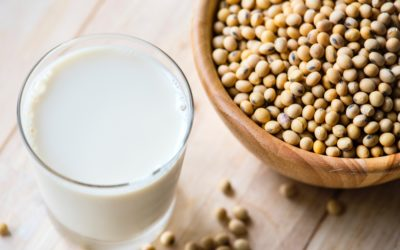 Is soy safe when trying to conceive?